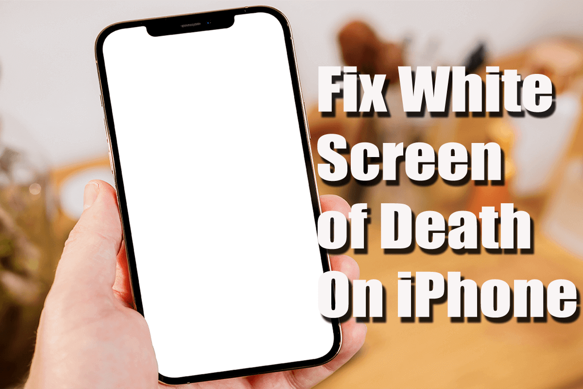 Fix White Screen of Death On iPhone